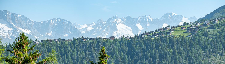 Alpe Rosswald vor der Aletsch Bergkette