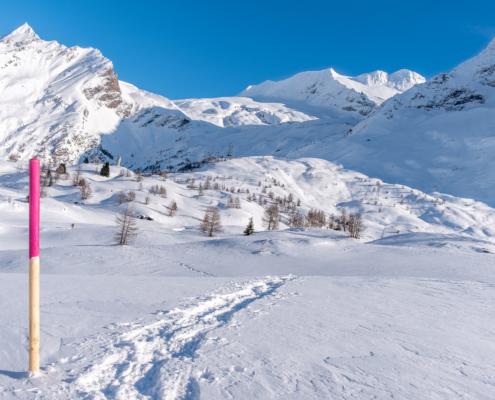Schneeschuhlaufen auf dem Simplonpass